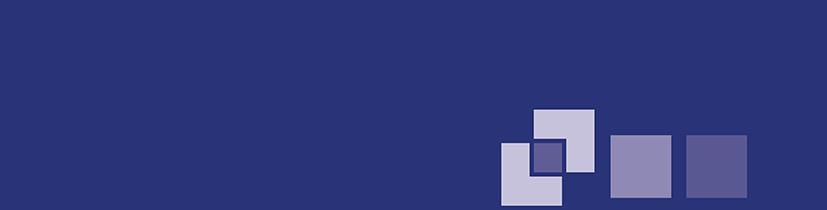 P&S Store-Logo